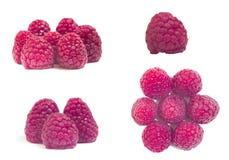 Insieme della frutta del lampone isolato Immagine Stock Libera da Diritti