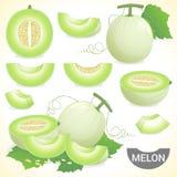 Insieme della frutta del melone del miele di melata del cantalupo Fotografie Stock