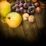 Insieme della frutta di autunno Immagine Stock