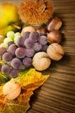Insieme della frutta di autunno Fotografia Stock