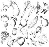 Insieme della frutta e delle verdure disegnate a mano Fotografia Stock