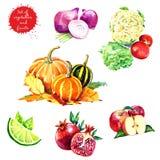 Insieme della frutta e delle verdure saporite fresche illustrazione vettoriale