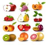 Insieme della frutta fresca Fotografia Stock