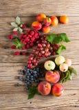 Insieme della frutta fresca differente, vista da sopra Immagine Stock Libera da Diritti