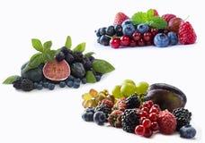 Insieme della frutta fresca e delle bacche Mirtilli, more, ribes rosso, uva, lamponi, fichi e prugne maturi Vario fresco Fotografie Stock Libere da Diritti