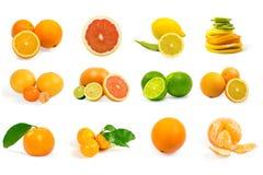 Insieme della frutta isolata Fotografia Stock