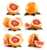 Insieme della frutta matura del pompelmo isolata su bianco Fotografia Stock Libera da Diritti