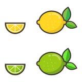 Insieme della limetta e del limone Fotografia Stock Libera da Diritti
