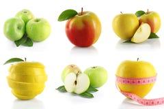 Insieme della mela Fotografia Stock Libera da Diritti