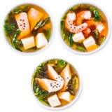 Insieme della minestra di miso giapponese Immagini Stock
