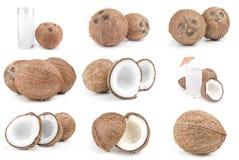 Insieme della noce di cocco Immagini Stock Libere da Diritti
