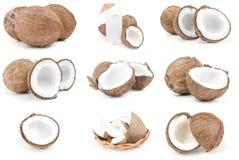 Insieme della noce di cocco su bianco Fotografia Stock