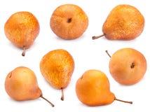 Insieme della pera del Brown Immagini Stock Libere da Diritti