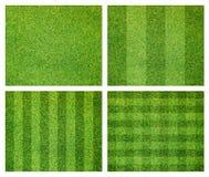 Insieme della priorità bassa dell'erba verde Fotografia Stock