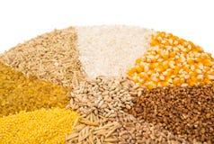 Insieme della raccolta dei chicchi di grano Immagine Stock Libera da Diritti