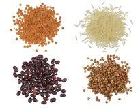 Insieme della raccolta dei chicchi di grano e dei mucchi dei semi Immagine Stock Libera da Diritti