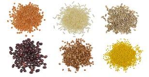 Insieme della raccolta dei chicchi di grano e del mucchio dei semi Immagine Stock Libera da Diritti