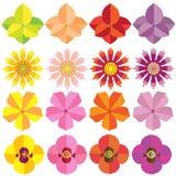 Insieme della raccolta dei fiori dell'oppio di gladiolo Fotografia Stock Libera da Diritti