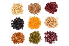 Insieme della raccolta di vari fagioli secchi dei legumi del rene, soia, lenticchie, ceci vicino sull'isolato su su fondo bianco Fotografie Stock