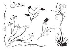 Insieme della siluetta del fiore Immagine Stock