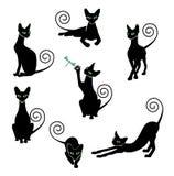Insieme della siluetta del gatto nero Illustrazione di Stock