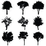 Insieme della siluetta di vettore degli alberi Fotografia Stock Libera da Diritti