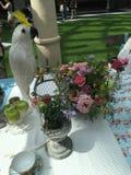 Insieme della tavola di picnic Fotografia Stock