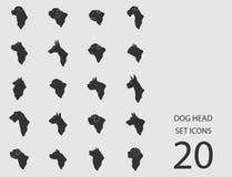 Insieme della testa di cane delle icone piane Illustrazione di vettore Illustrazione Vettoriale