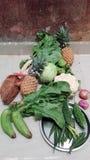Insieme della verdura, alimento indiano vegetariano fotografia stock