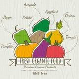 Insieme della verdura e della frutta organiche, vettore Fotografia Stock