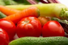 Insieme della verdura fresca Immagini Stock