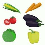 Insieme della verdura su fondo bianco Fotografia Stock