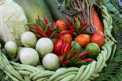 Insieme della verdura tailandese Fotografie Stock