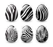 Insieme della zebra barrato sull'uovo illustrazione di stock