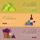 Insieme delle alette di filatoio per le collezioni del vino dell'elite illustrazione di stock
