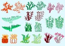 Insieme delle alghe del pixel illustrazione vettoriale