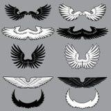 Insieme delle ali dell'araldica Fotografie Stock