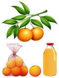 Insieme delle arance e del succo freschi Fotografia Stock