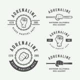 Insieme delle arti marziali miste d'annata o del logos del club di combattimento, emblema illustrazione vettoriale