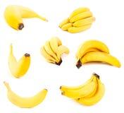 Insieme delle banane immagine stock libera da diritti
