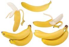 Insieme delle banane gialle isolate su bianco Fotografie Stock Libere da Diritti