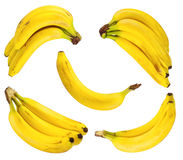 Insieme delle banane mature Fotografia Stock