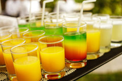 Insieme delle bevande riempite su un vassoio Immagine Stock Libera da Diritti