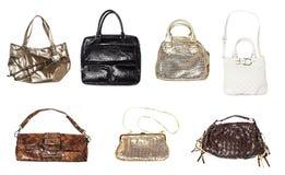 Insieme delle borse delle donne Fotografia Stock Libera da Diritti