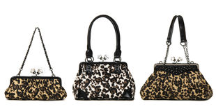 Insieme delle borse delle donne del leopardo Fotografie Stock Libere da Diritti