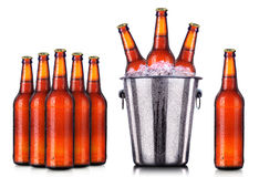 Insieme delle bottiglie da birra con i cali gelidi in ghiaccio Immagine Stock