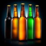 Insieme delle bottiglie di birra isolate su fondo nero Fotografie Stock