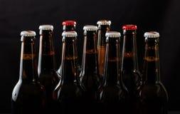 Insieme delle bottiglie di birra su fondo nero Immagine Stock