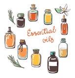 Insieme delle bottiglie di olio essenziale di scarabocchio Immagini Stock Libere da Diritti