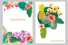 Insieme delle carte con le piante tropicali sul fondo di contrasto Fotografia Stock